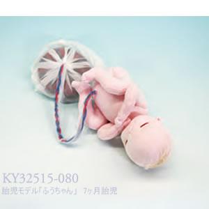 胎児モデル「ふうちゃん」 7ヶ月胎児 KY32515-080    品番 KY32515-080